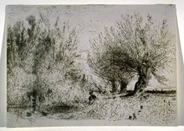 Bords de riviere ou La Mare aux trois saules (Banks of a Stream or Pond with Three Willows)