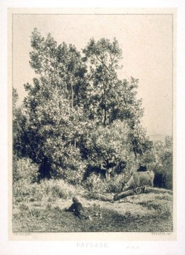 Landscape-young girl with cows