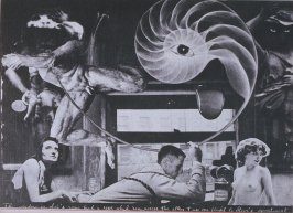 The window in Sal's room had a rope which ran across the alley & up one flight to Steve's apartment, eighth image in the book The Better Dream House (White Rabbit Press, 1968)