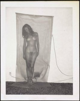 Untitled (Nude no. 04), from the Hollywood Suites