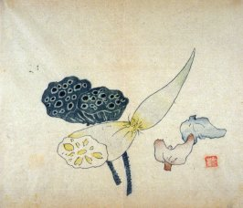 Lotus pods, root, and two water caltrops, No.15 from Volume I(1+2) on Miscellaneous Subjects - from: The Treatise on Calligraphy and Painting of the Ten Bamboo Studio