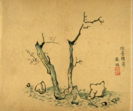 Sparsely Blooming Plum Tree, Rocks on Ground, No.16 from the Volume on Plums - from: The Treatise on Calligraphy and Painting of the Ten Bamboo Studio