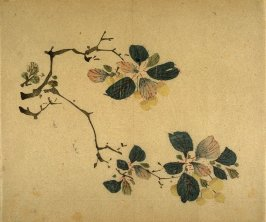 Two Branches of Cherries, No.4 from the Volume on Fruit - from: The Treatise on Calligraphy and Painting of the Ten Bamboo Studio