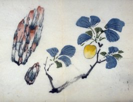 Apricot Branch and Two Rocks, No.14 from the Volume on Fruit - from: The Treatise on Calligraphy and Painting of the Ten Bamboo Studio
