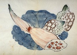 Lotus Leaf, Root and Sprouts, No.10 from the Volume on Fruit - from: The Treatise on Calligraphy and Painting of the Ten Bamboo Studio