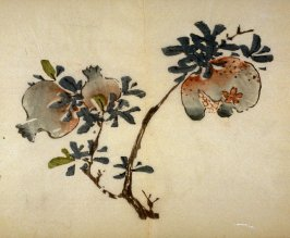 Branch of Three Pomegranates, No.13 from the Volume on Fruit - from: The Treatise on Calligraphy and Painting of the Ten Bamboo Studio