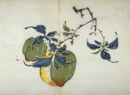 Two Peaches, No.1 from the Volume on Fruit - from: The Treatise on Calligraphy and Painting of the Ten Bamboo Studio