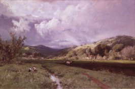 Spring Landscape (Spring in Marin County)