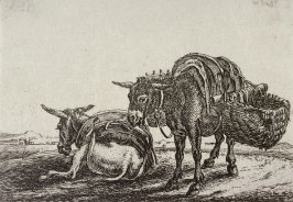 [Two donkeys, from] Series of Six Etchings of Animals