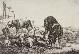 [Dogs, from] Series of Six Etchings of Animals