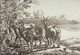 [Goats, from] Set of Six Animals