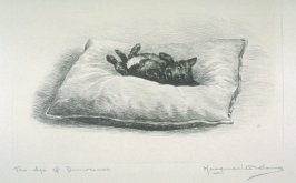 The Age of Innocence (Scottie lying on pillow)