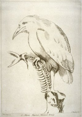 Bird with fish, from the series 'Prints in Imitation of Drawings'