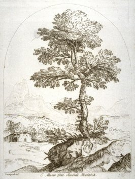 Tree in a landscape, from the series 'Prints in Imitation of Drawings'