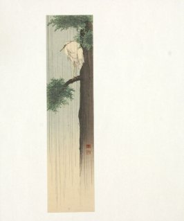 Untitled (Crane in a Pine Tree)