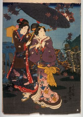 Two women viewing maple leaves