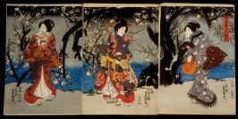 Viewing Plum Blossoms at Night (Okonomi yoru no umemi)