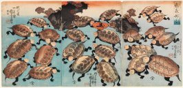 Kabuki actors as turtles