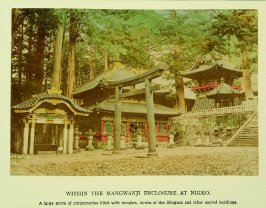 Within the Mangwanji Enclosure at Nikko