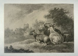 One ram and two goats, in background buildings