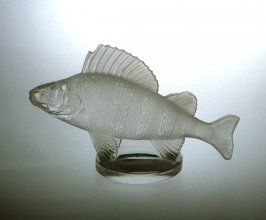 Presse-papier (paperweight) in the form of a Tiger barb fish (perche)