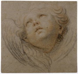 Head of a Winged Cherub (facing left)