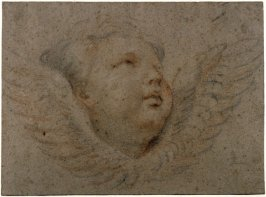 Head of a Winged Cherub (facing right)