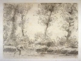 Fisherman wading in a wooded stream