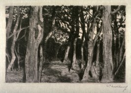 Baumgruppe (Group of Trees)