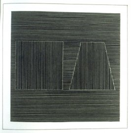 Plate 10 in the book Six geometric figures and all their combinations using white lines in two directions (New York: Parasol Press Ltd. :1980), vol. 2 (of 2) ( white on black)