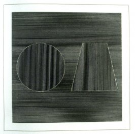 Plate 14 in the book Six geometric figures and all their combinations using white lines in two directions (New York: Parasol Press Ltd. :1980), vol. 2 (of 2) ( white on black)