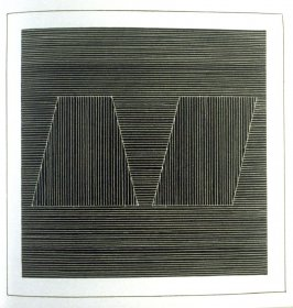 Plate 21 in the book Six geometric figures and all their combinations using white lines in two directions (New York: Parasol Press Ltd. :1980), vol. 2 (of 2) ( white on black)