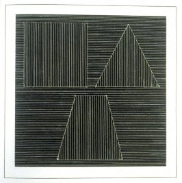 Plate 27 in the book Six geometric figures and all their combinations using white lines in two directions (New York: Parasol Press Ltd. :1980), vol. 2 (of 2) ( white on black)