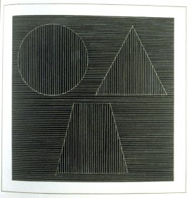 Plate 33 in the book Six geometric figures and all their combinations using white lines in two directions (New York: Parasol Press Ltd. :1980), vol. 2 (of 2) ( white on black)