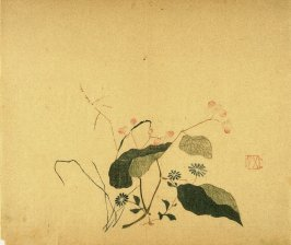 Begonia, Grasses and Aster, No.7 from Volume I(1+2) on Miscellaneous Subjects - from: The Treatise on Calligraphy and Painting of the Ten Bamboo Studio