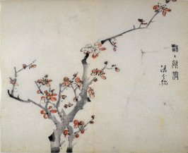Two pink plum branches (growing from lower left) in wind, No.2 from the Volume on Plums - from: The Treatise on Calligraphy and Painting of the Ten Bamboo Studio