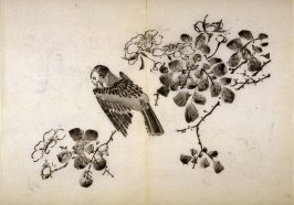 Bird Scratching Throat, No.10 from the Volume on Birds - from: The Treatise on Calligraphy and Painting of the Ten Bamboo Studio