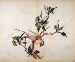 Yellow Fly Catcher; Pear, No.8 from the Volume on Birds - from: The Treatise on Calligraphy and Painting of the Ten Bamboo Studio