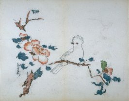 White-crested Bird on Camellia in Snow, No.4 from the Volume on Birds - from: The Treatise on Calligraphy and Painting of the Ten Bamboo Studio