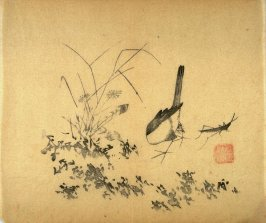 Bird and Grasshopper, No.13 from the Volume on Birds - from: The Treatise on Calligraphy and Painting of the Ten Bamboo Studio