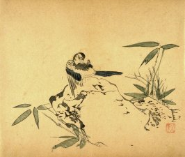 Preening Bird; Rock, Bamboo, No.2 from the Volume on Birds - from: The Treatise on Calligraphy and Painting of the Ten Bamboo Studio