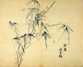 """Sprouting Green""- No.12 from the Volume on Bamboo - from: The Treatise on Calligraphy and Painting of the Ten Bamboo Studio"