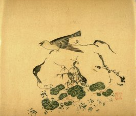 Wagtail on Rock, No.12 from the Volume on Birds - from: The Treatise on Calligraphy and Painting of the Ten Bamboo Studio