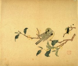Bird and Sweet Olive Blossom, No.14 from the Volume on Birds - from: The Treatise on Calligraphy and Painting of the Ten Bamboo Studio