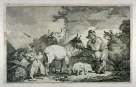 Herder with animals