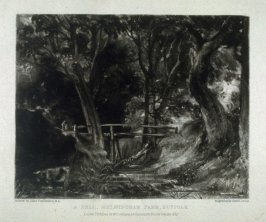 Plate 8: A Dell. Helmingham Park. Suffolk., from the album 'Various Subjects of Landscape, Characteristic of English Scenery' (London: John Constable, 1830-[1832])