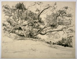 Study of trees with artist's back