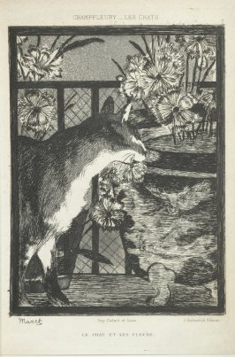 """""""Le chat et les fleurs (the cat and the flowers),"""" pg. 40, in the book Les Chats (Cats) by Champfleury (Paris: J. Rothschild, 1870)."""