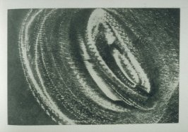 Untitled,eighth image in the book Sun's Reception (Oakland CA.: Crown Point Press, 1974)