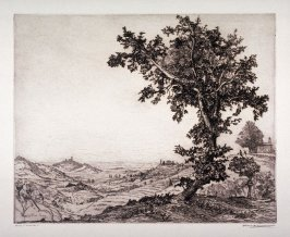The Oak of the Poet